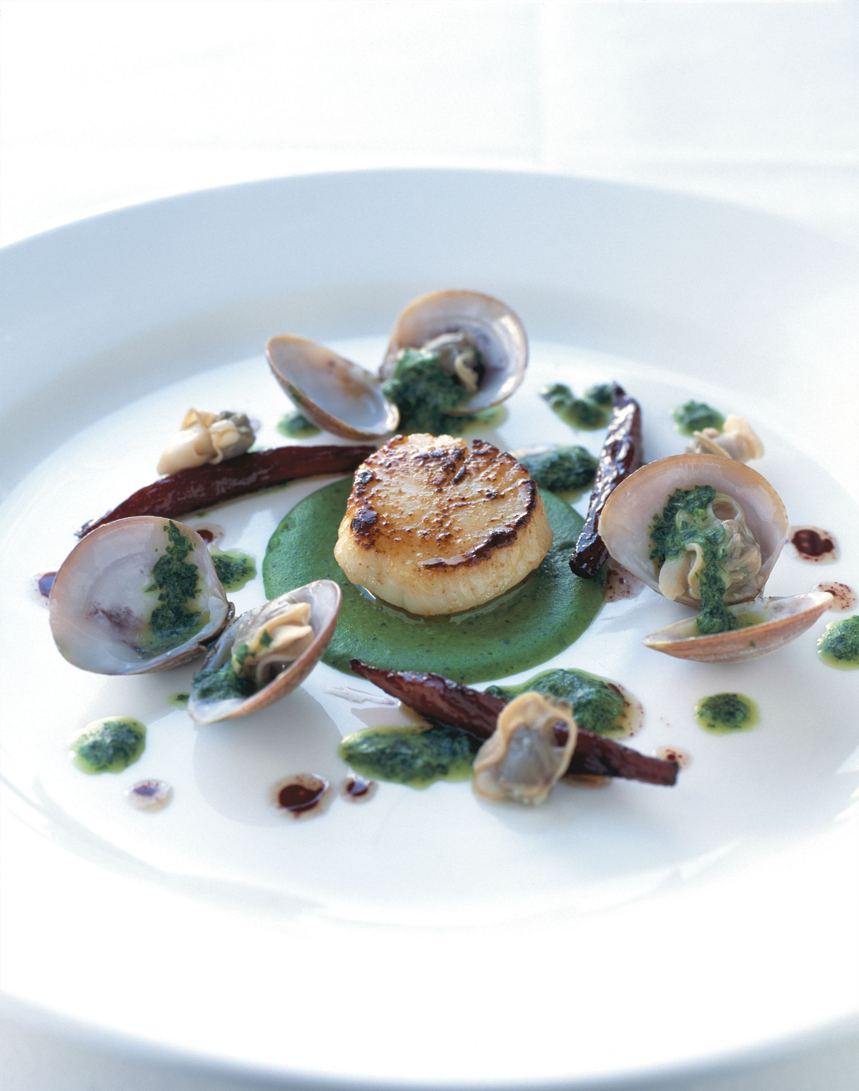 Caramelised scallops with a fricassée of clams and salsify