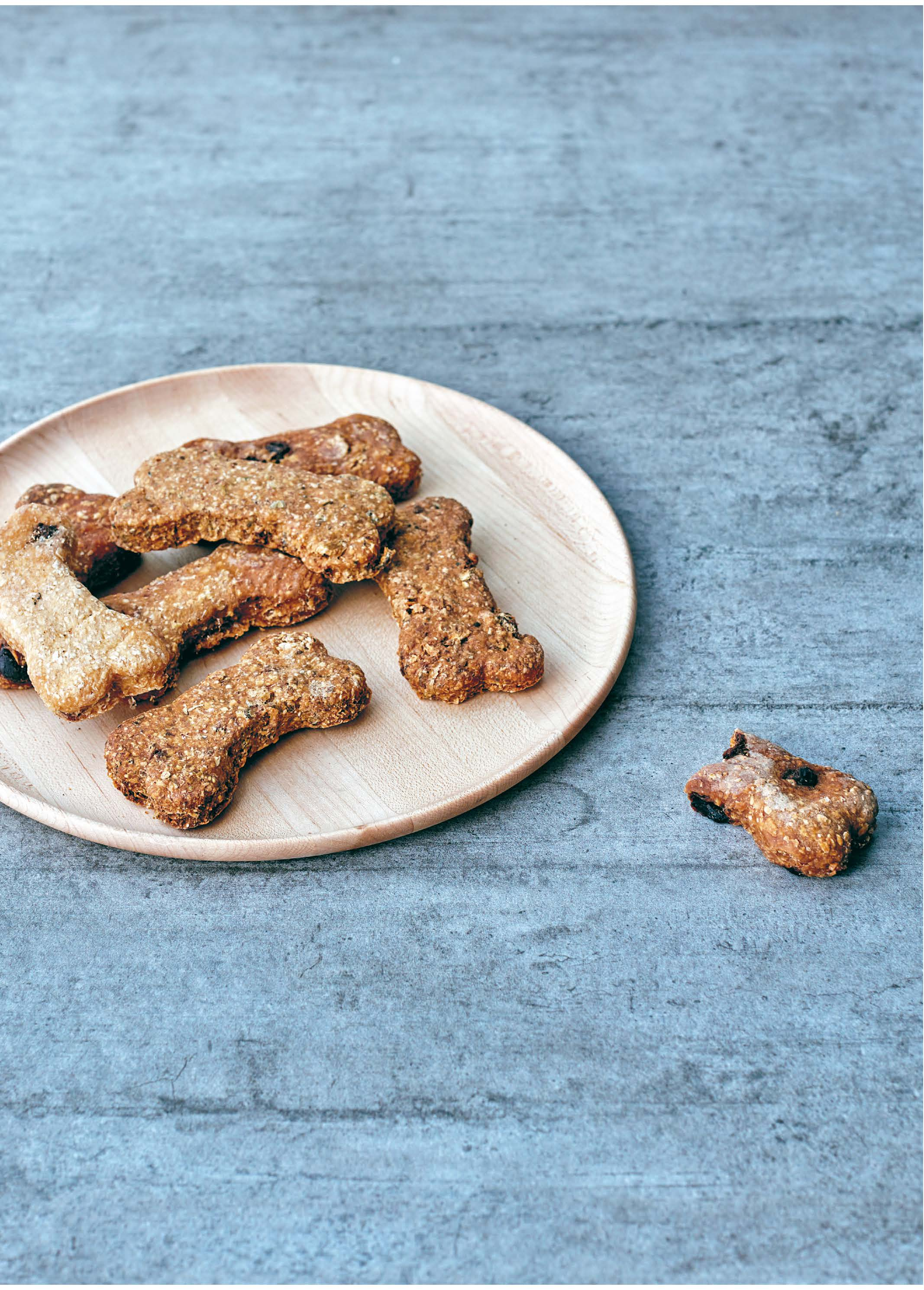 VEGAN PEANUT BUTTER DOG BISCUITS