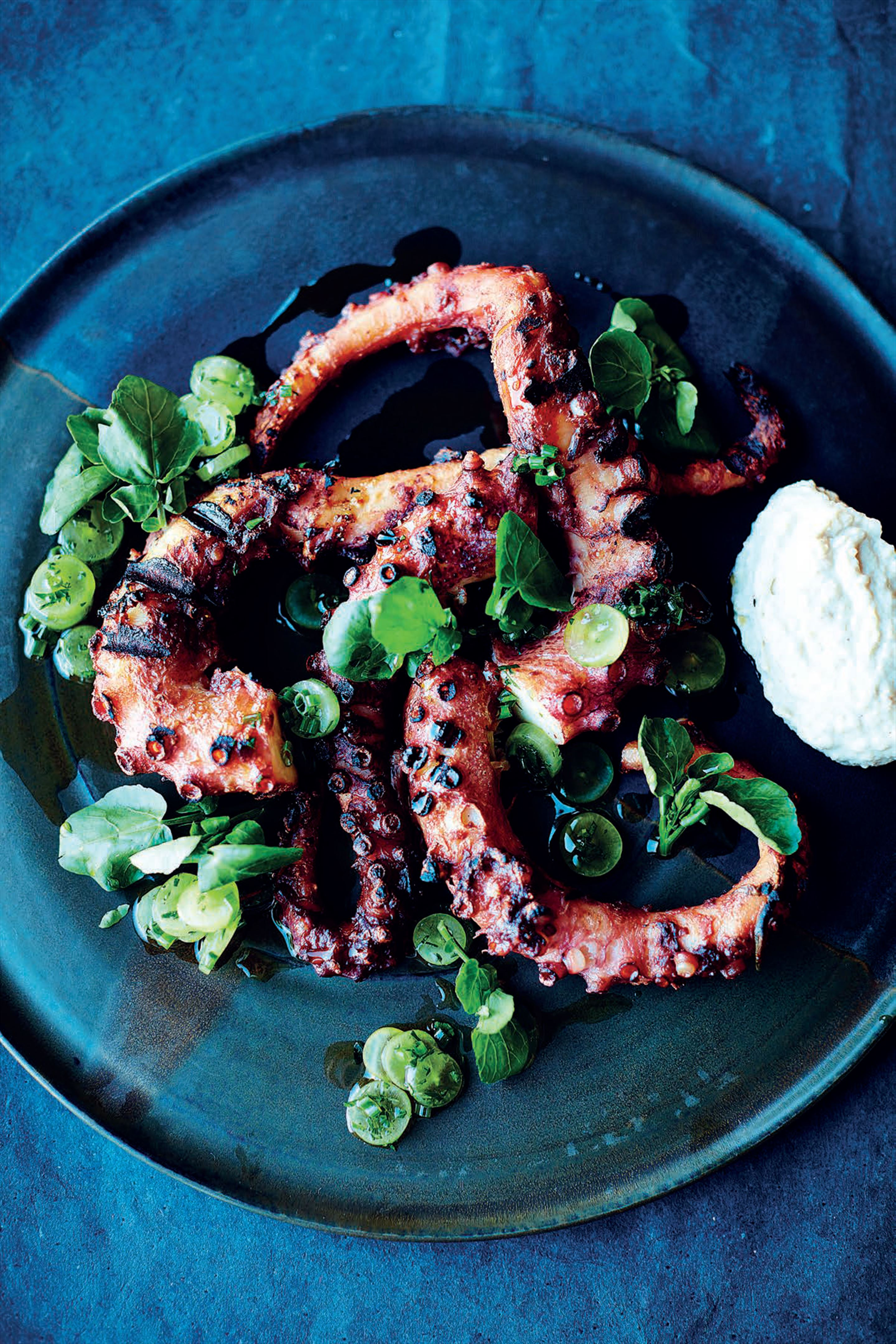 Seared octopus, almond and sherry vinegar bread sauce