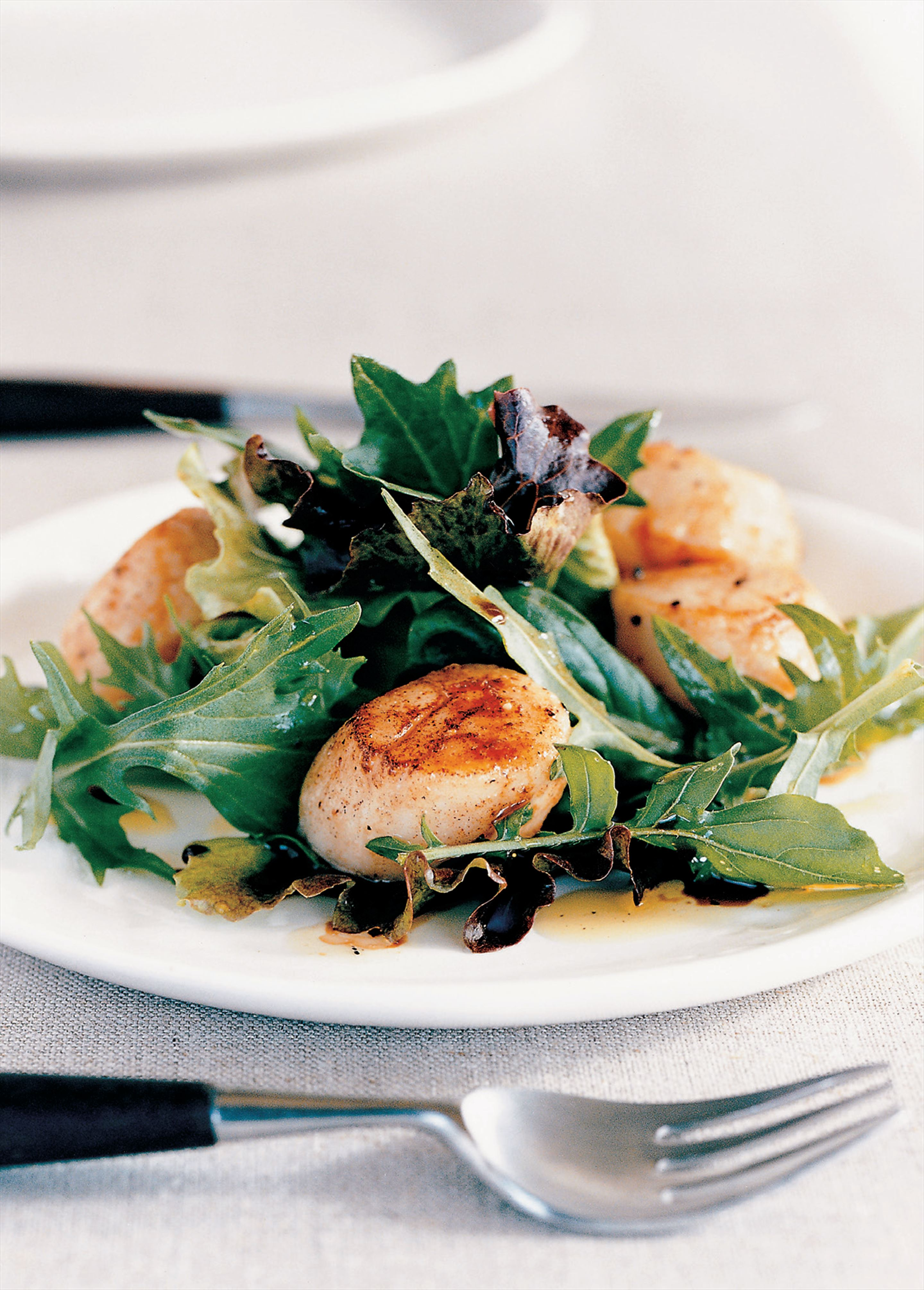 Seared scallop salad