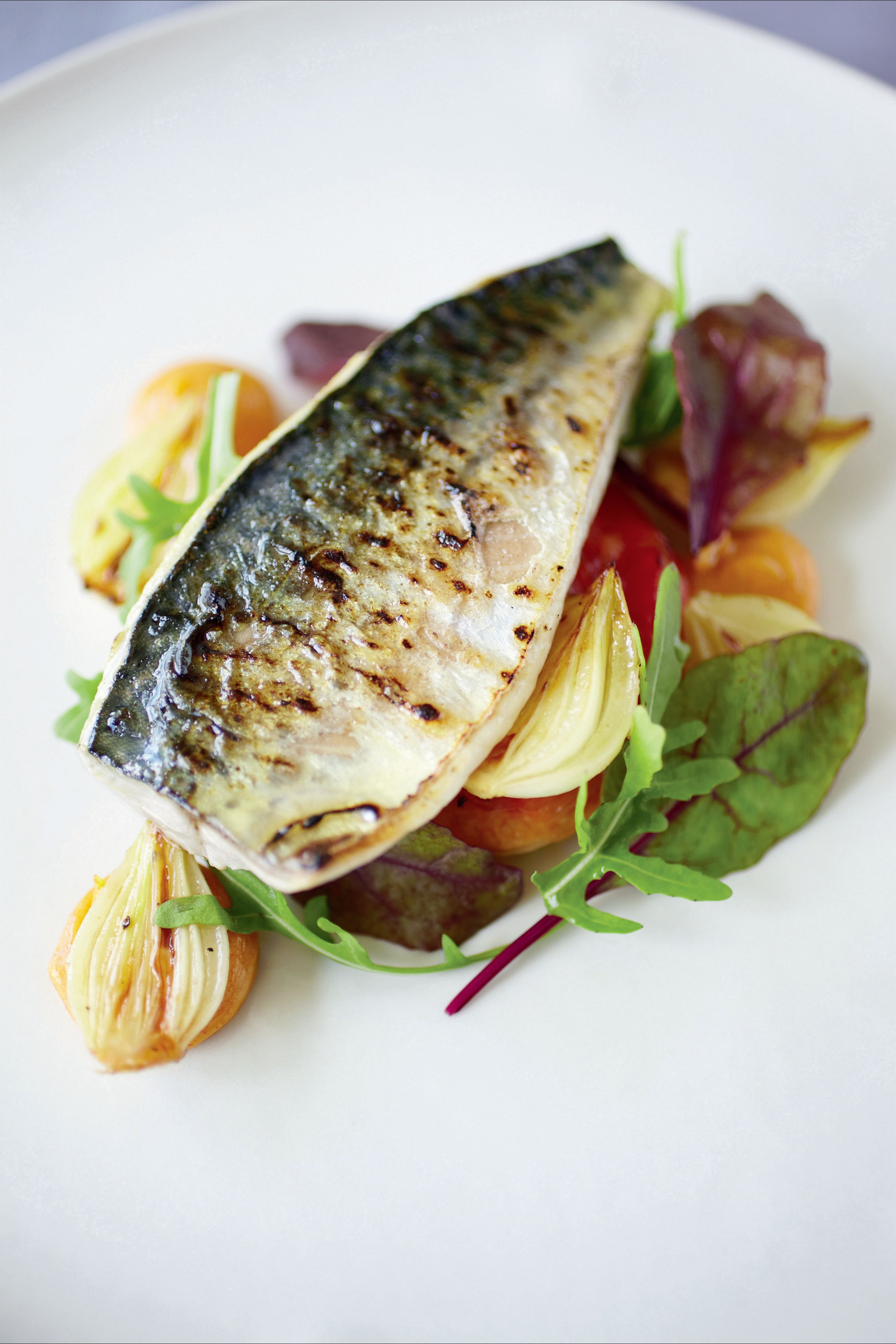 Mackerel on red pepper marmalade tart with smoked paprika mayonnaise