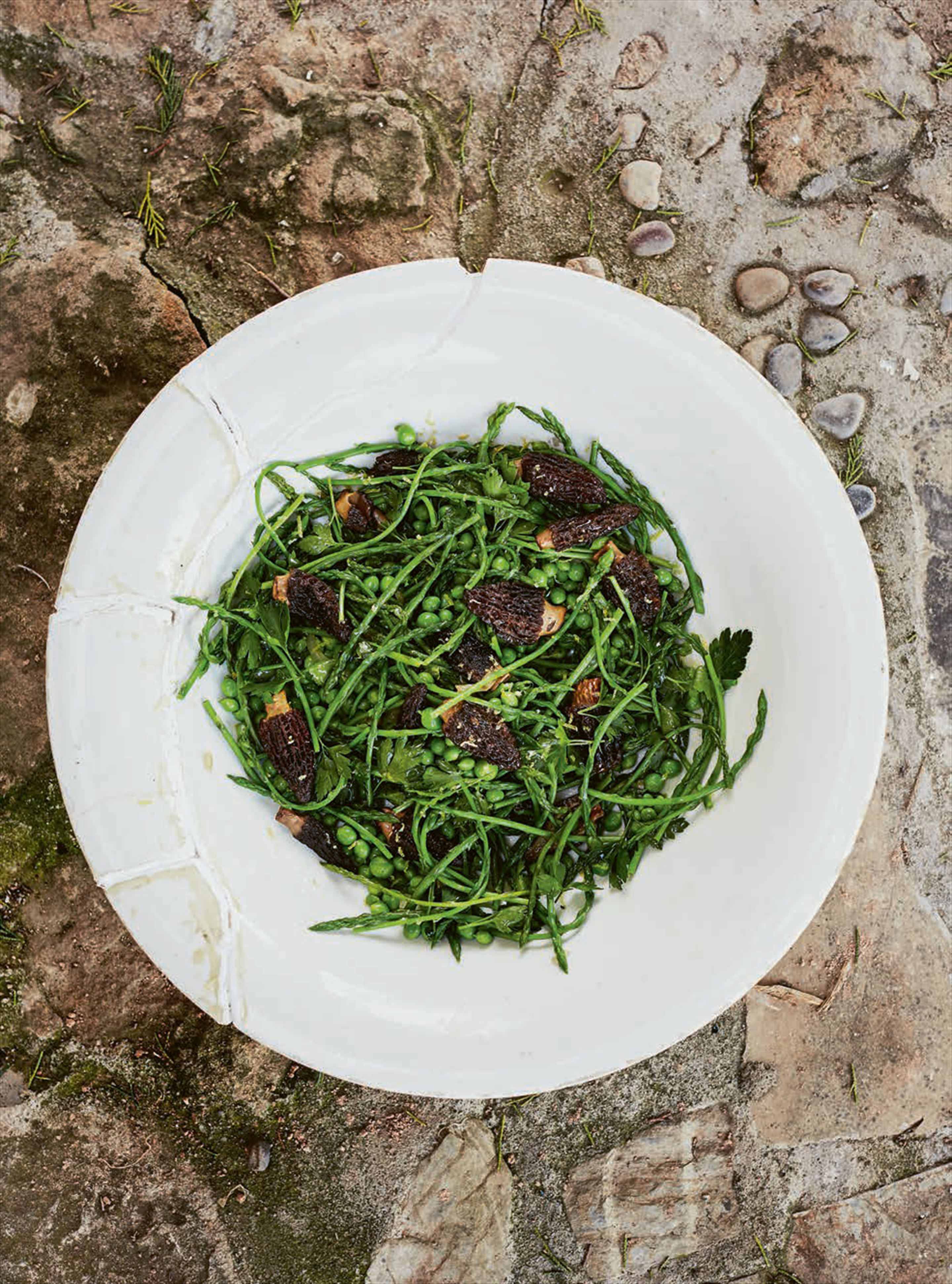 Wild asparagus with peas & morels
