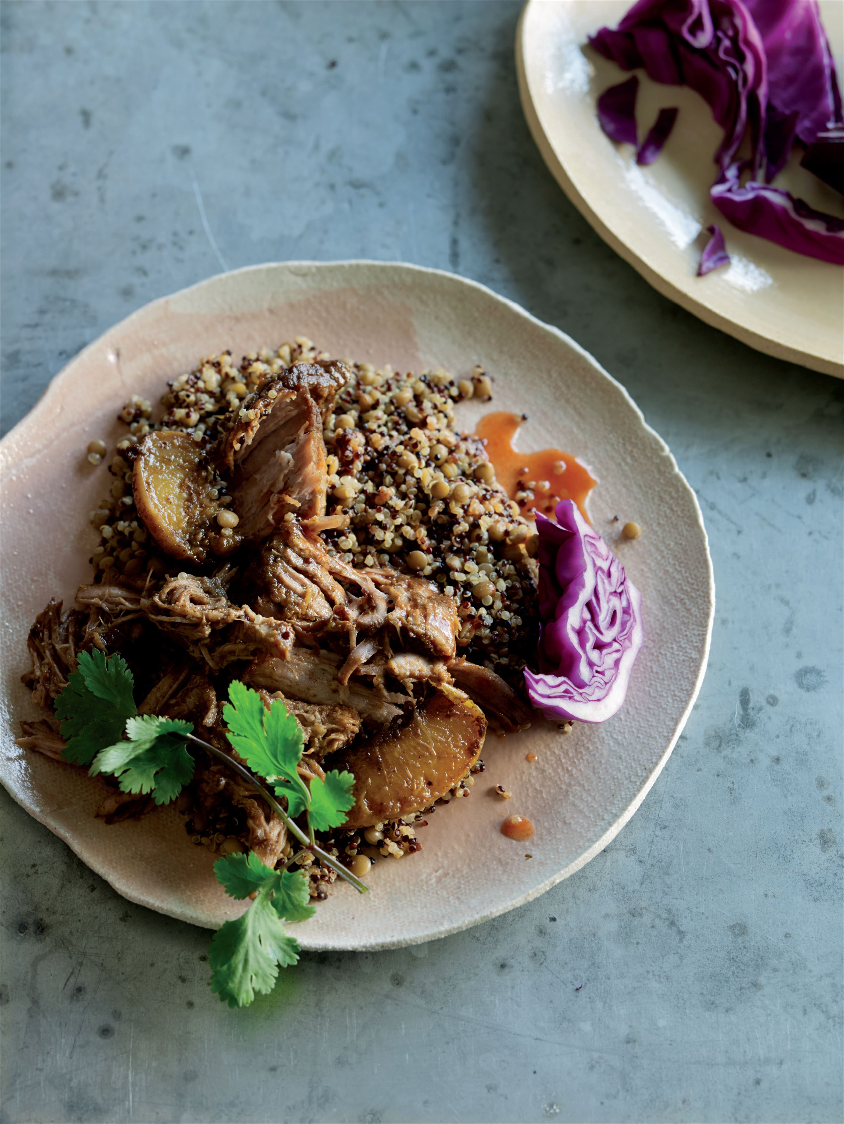Peach pulled pork with dirty quinoa