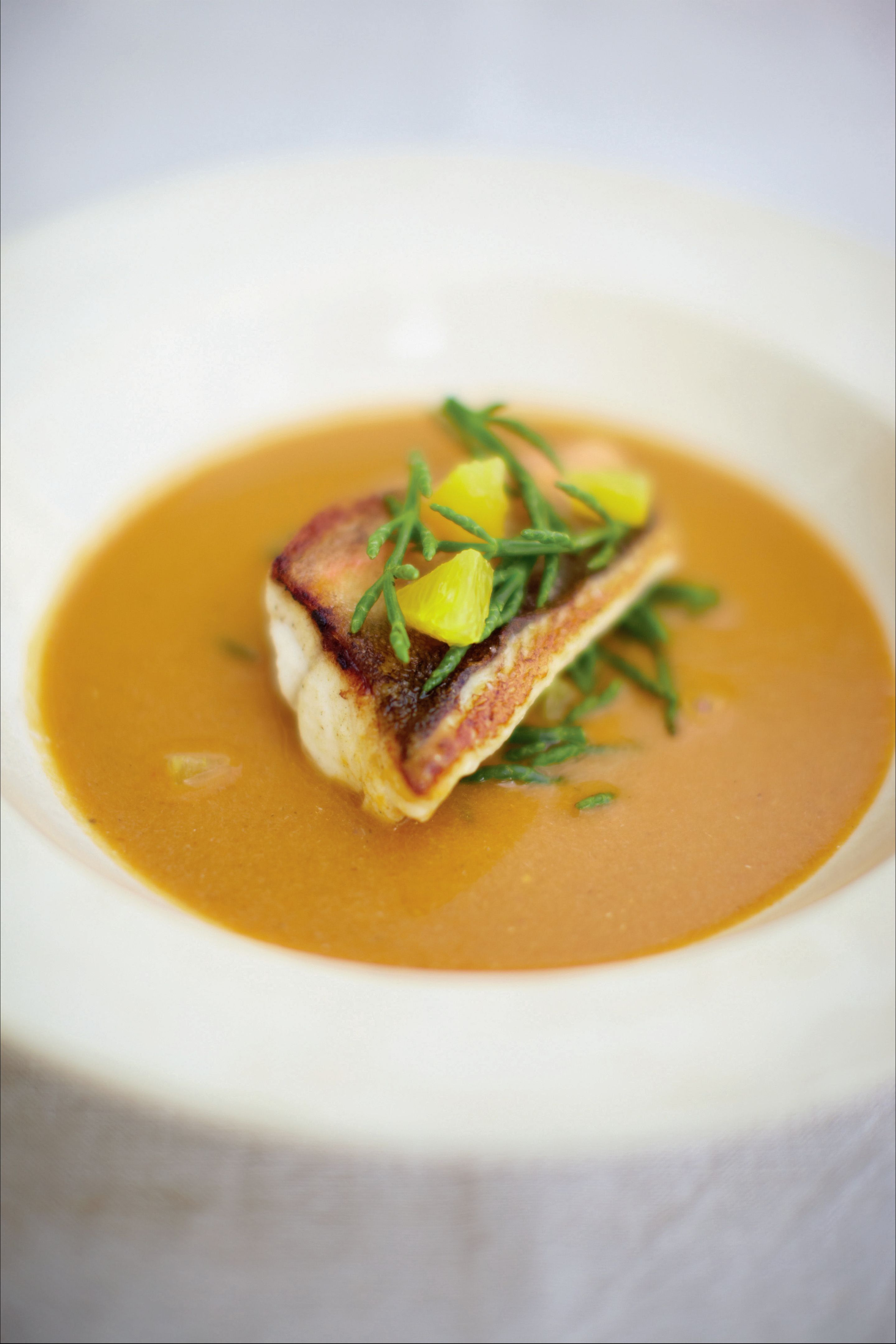 Red gurnard soup with samphire and orange