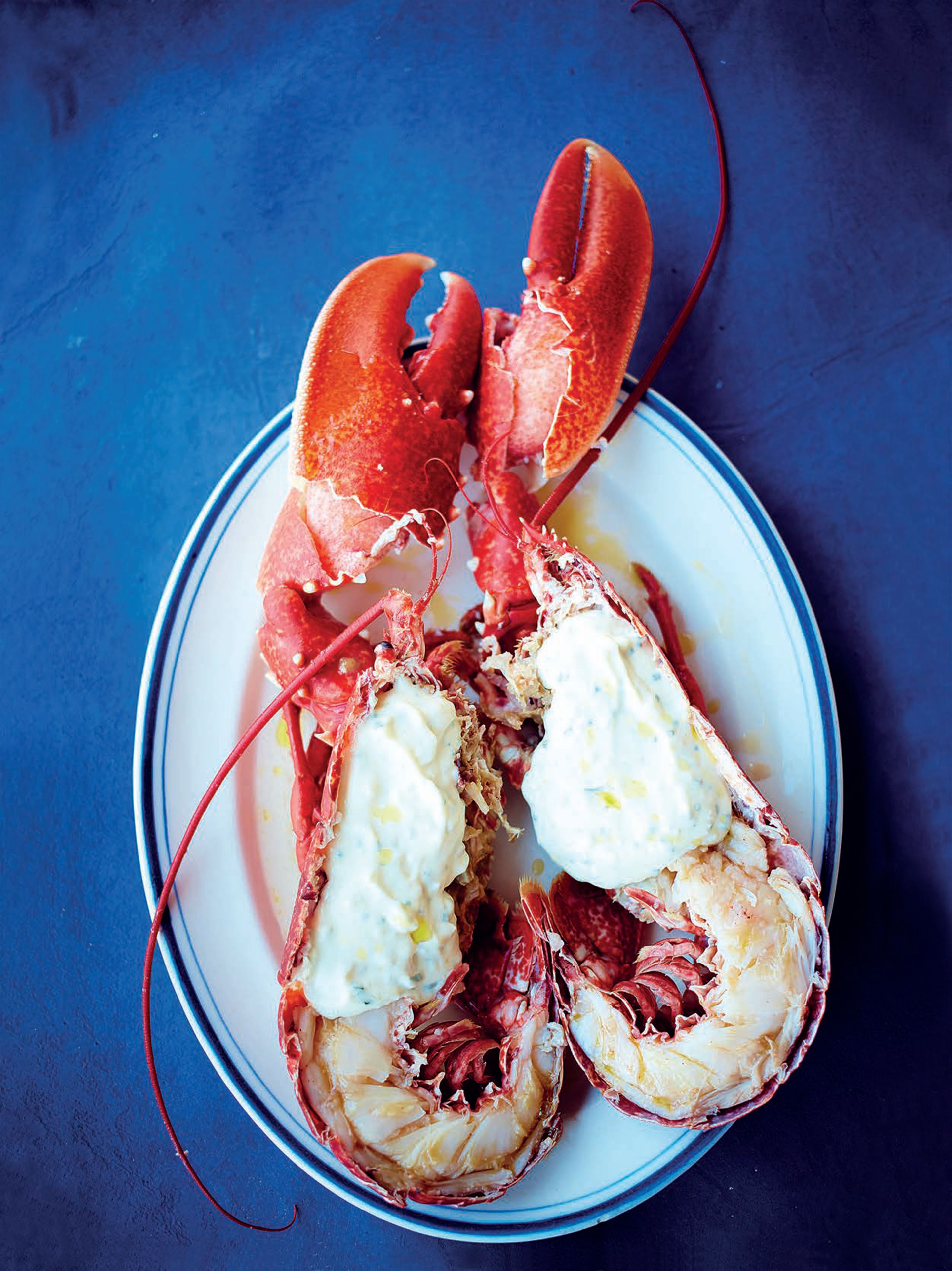 Dressed lobster with herb mayonnaise