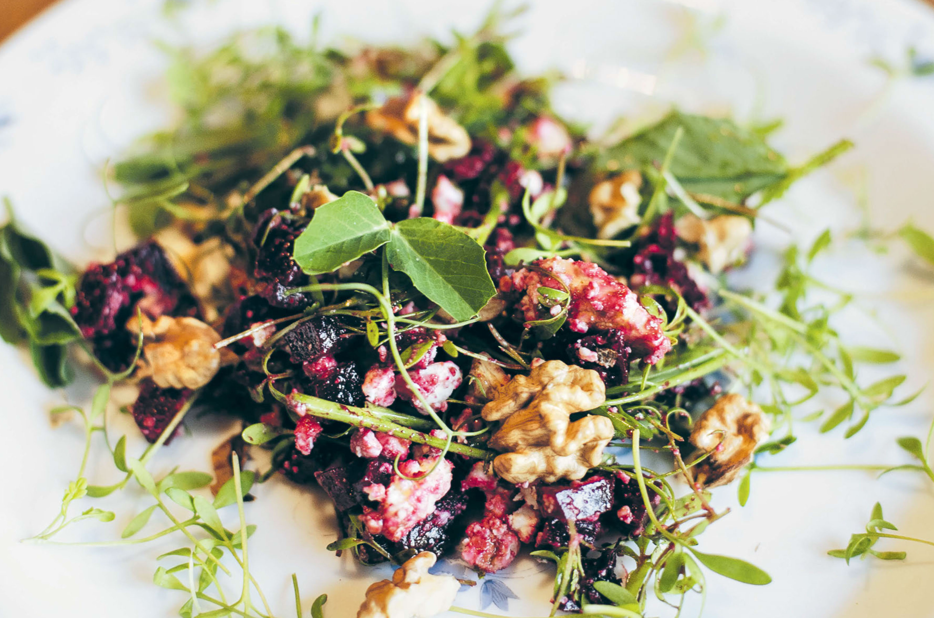 Beetroot & walnut salad