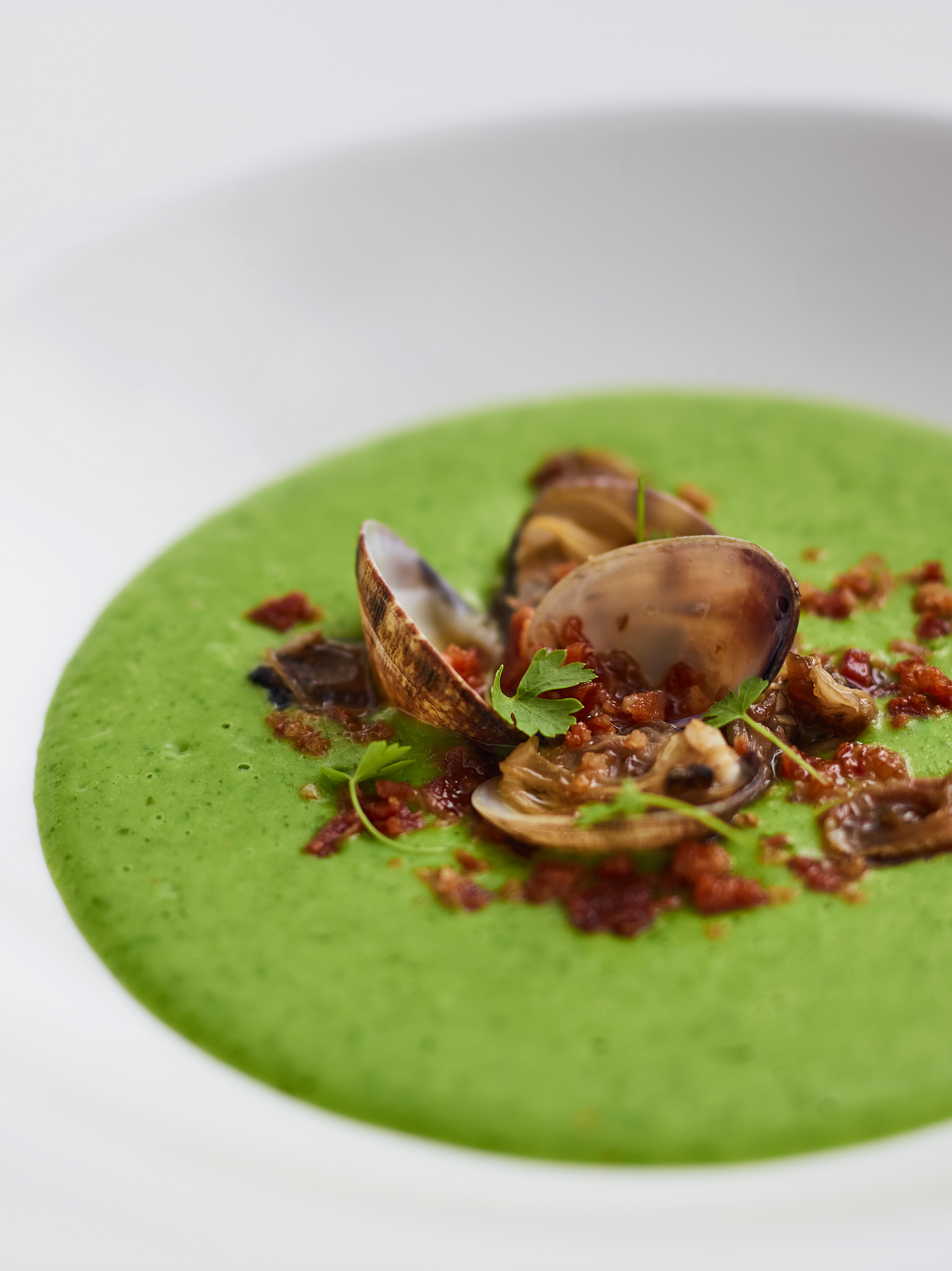 Palourde clams with Jersey Royal, parsley & wild garlic veloute, bacon crumb