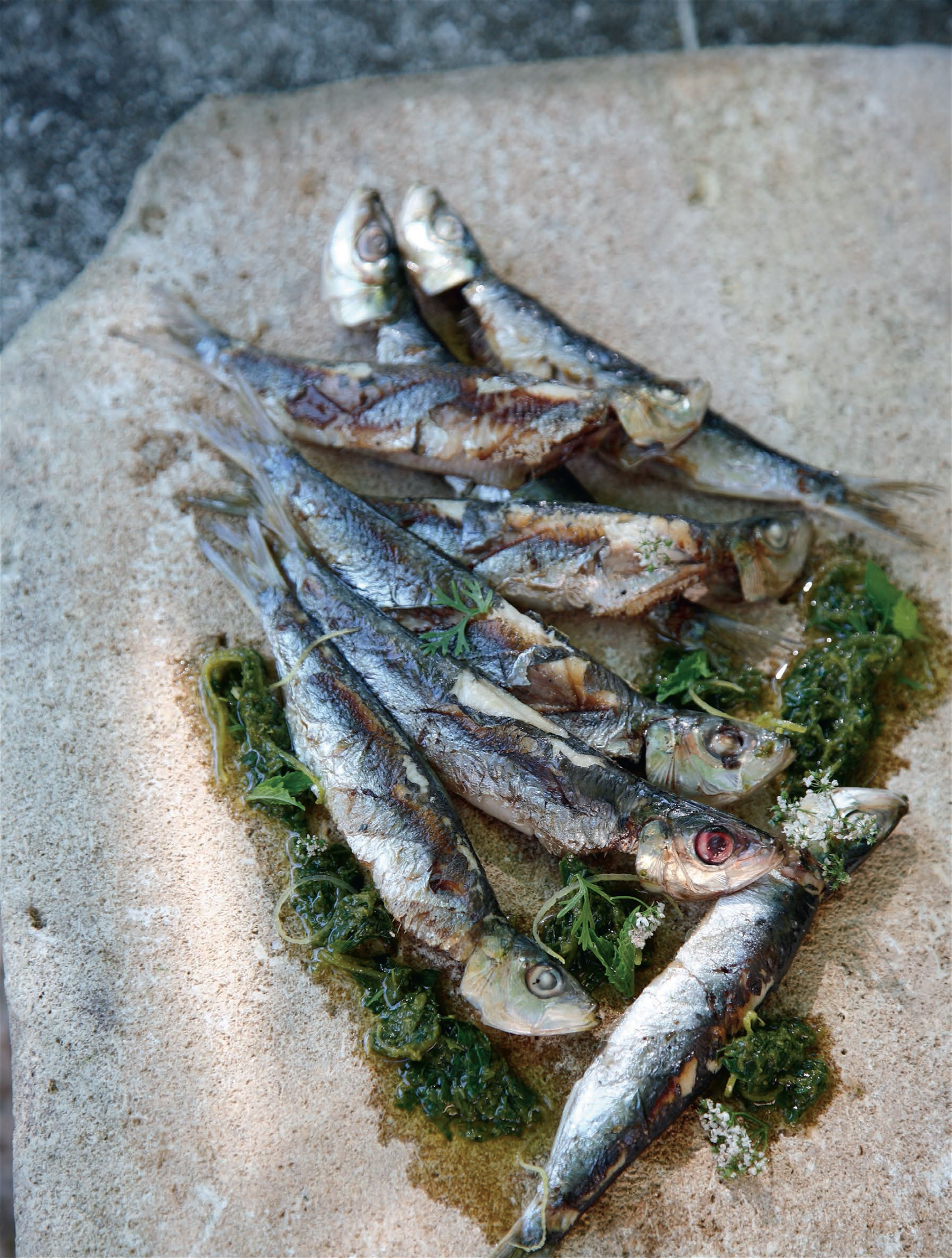 Grilled sardines with chermoula
