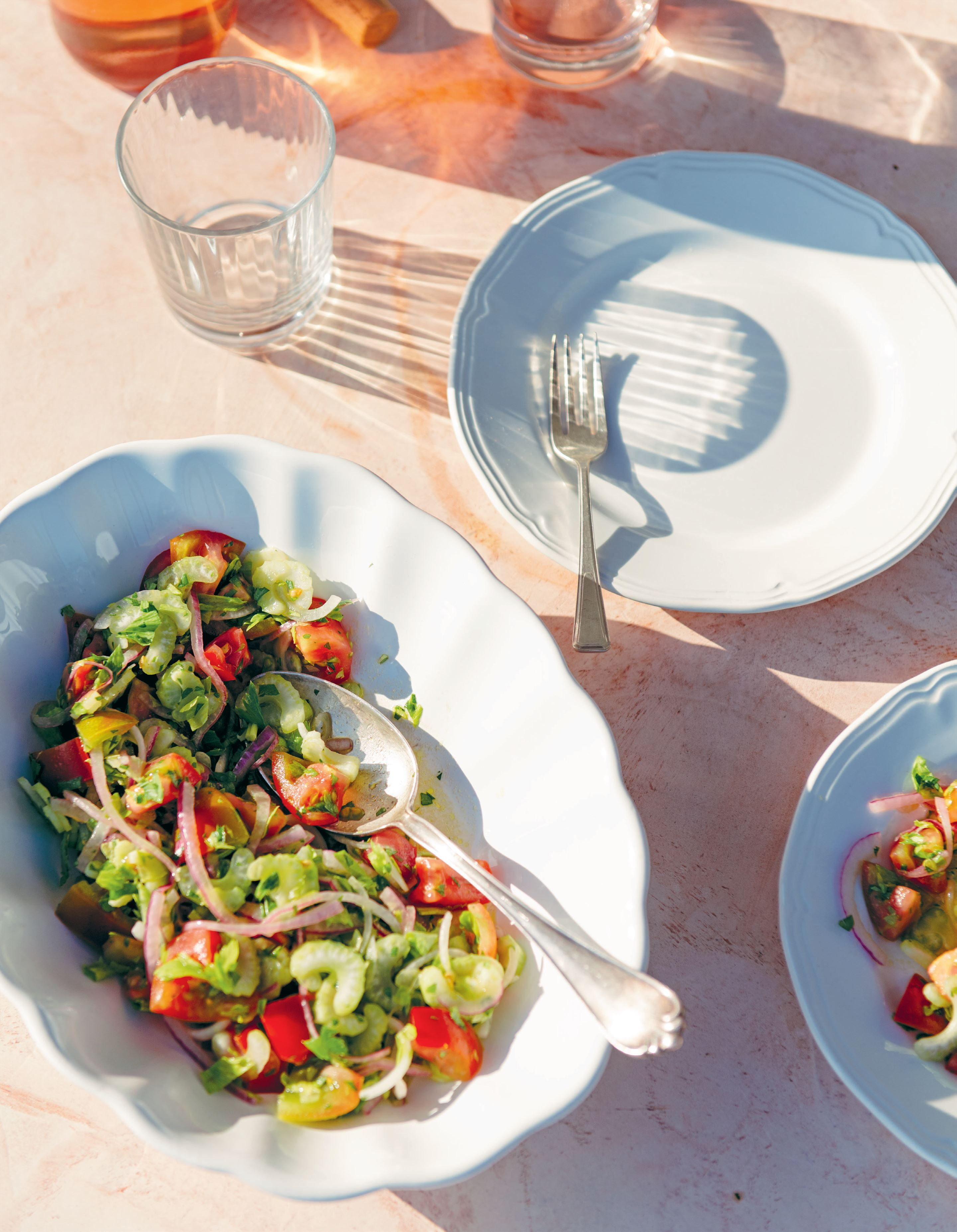 Tomato and celery salad from giglio island